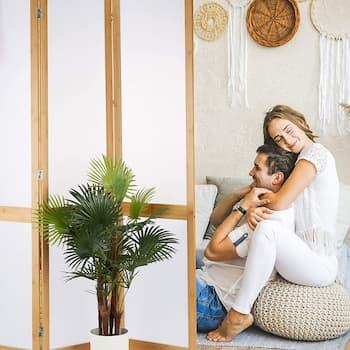 Biombos de Bambú baratos